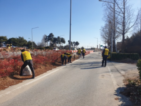 [도로과]건설교통국 도로변 환경정비2.jpg