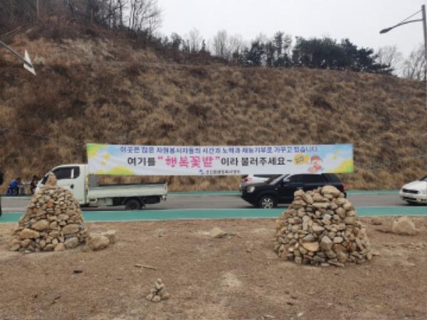 [선산읍] 42,000㎡ 규모의 유채꽃 축제 준비에 박차를 가하다2.jpg