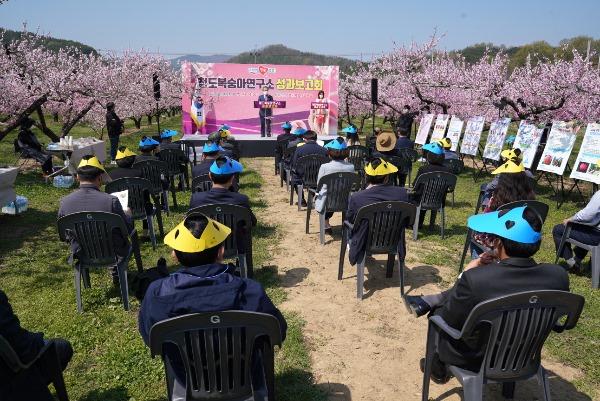 청도복숭아연구소_성과보고회1.JPG